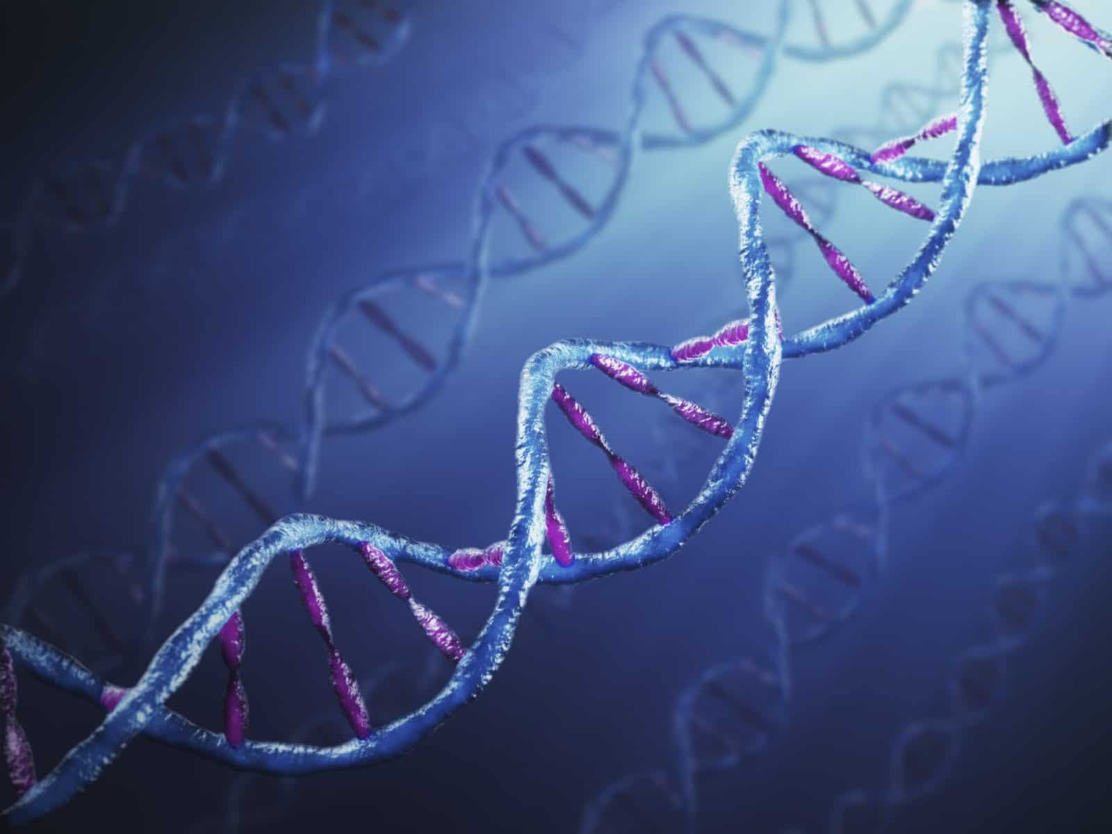 FTDNA Ancestry DNA 23andme raw data analysis interpretation tools