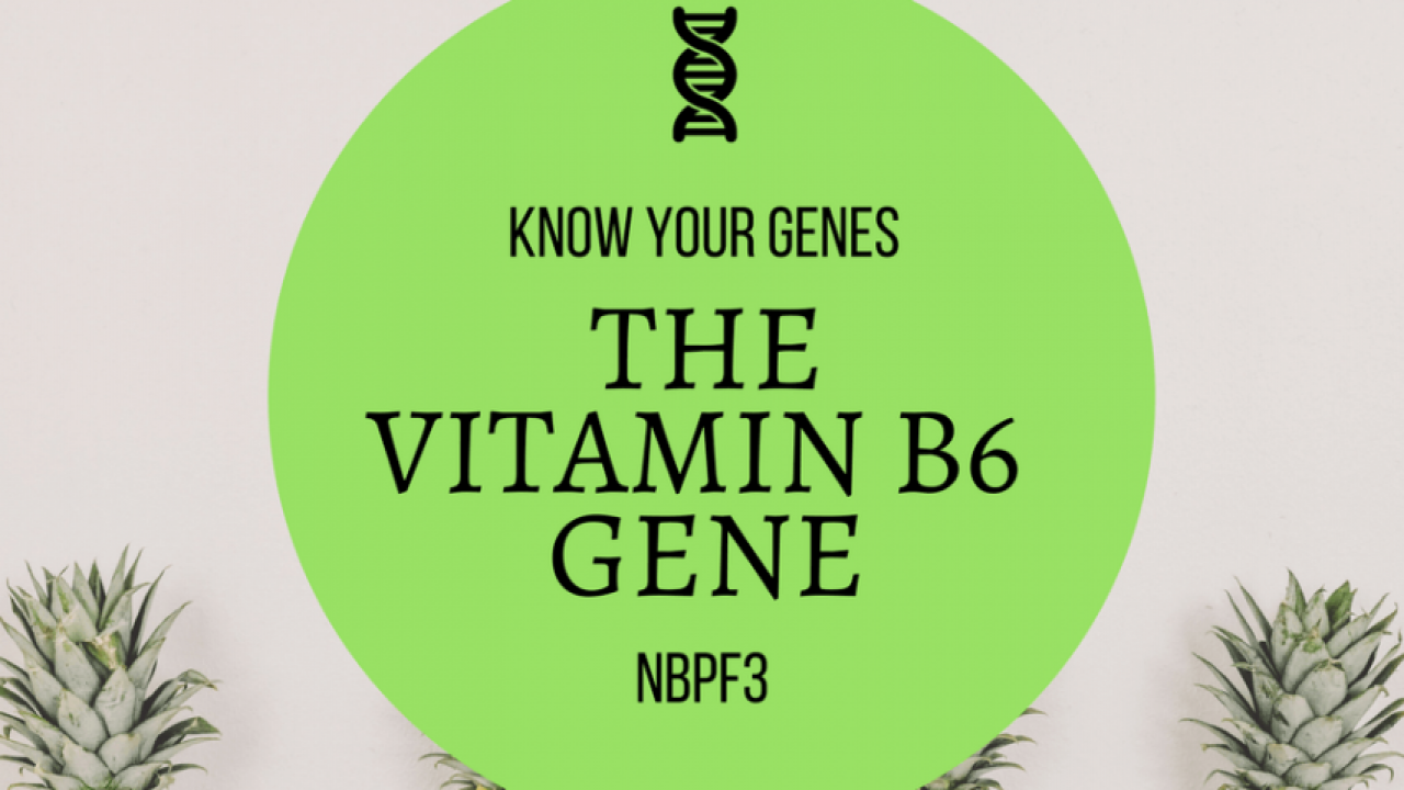 "Know Your Genes: NBPF3 ""Vitamin B6 Gene"" - Xcode Life"