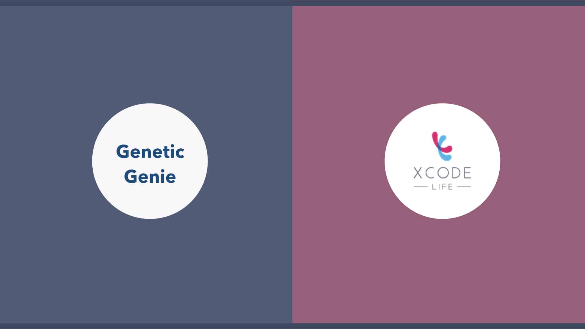 Genetic genie MTHFR DNA raw data analysis third party tool