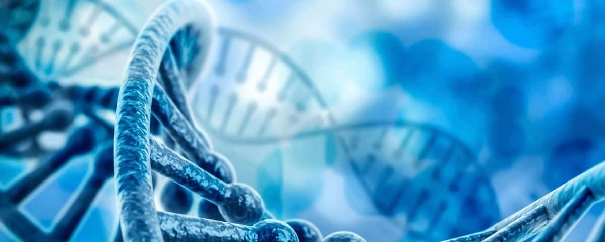 23andme MTHFR gene status methylation raw data analysis
