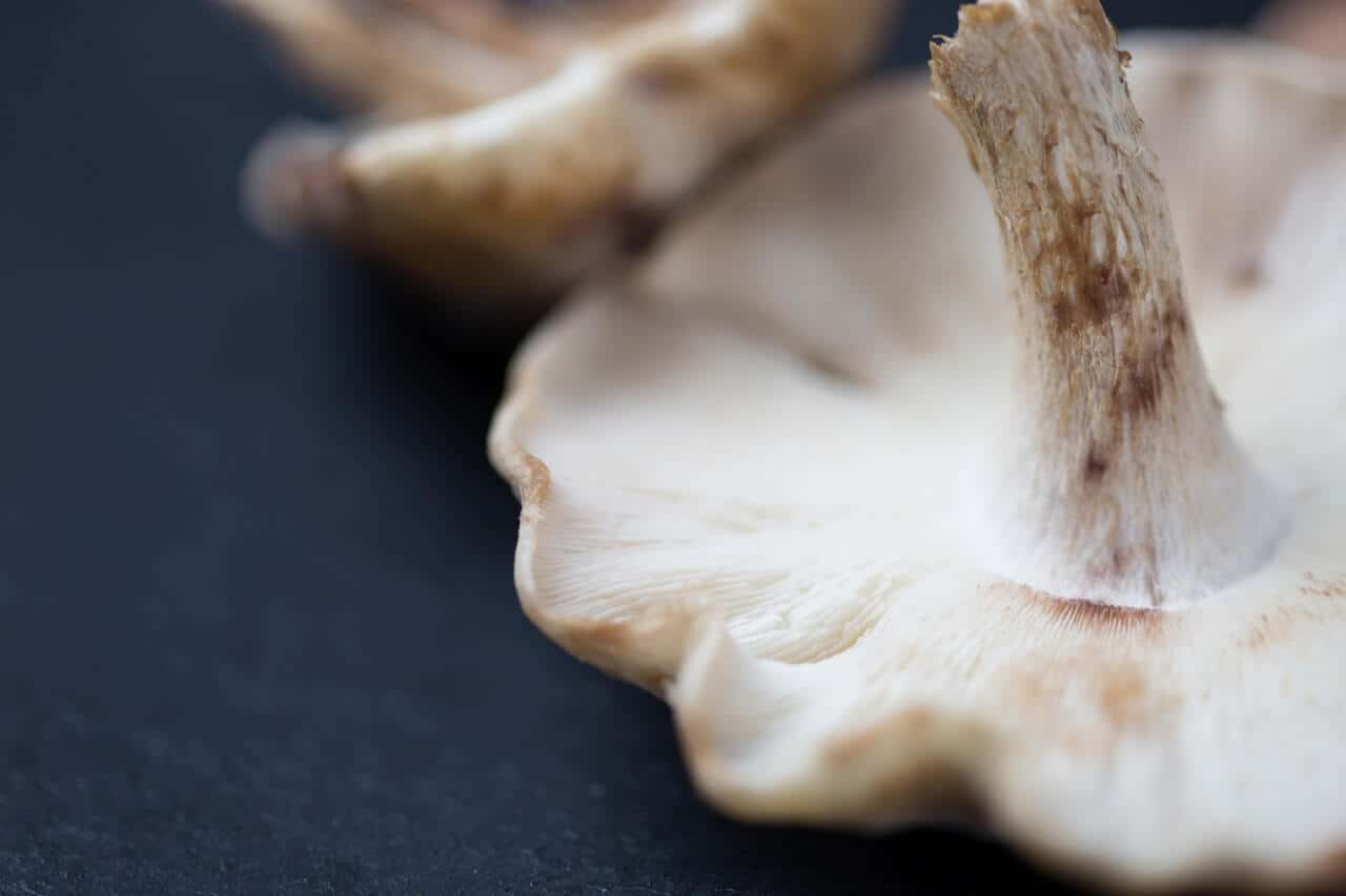 Analyze DNA raw data for mushroom intolerance
