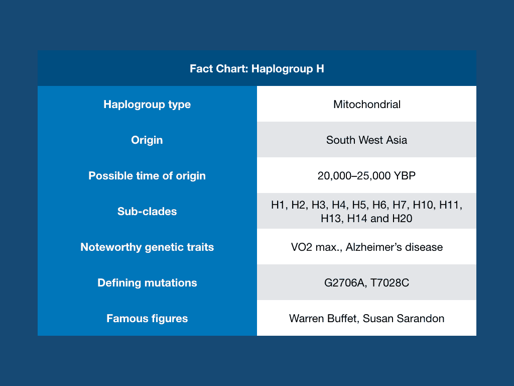 Haplogroup H Fact Chart