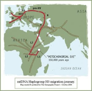 Migration of haplogroup H