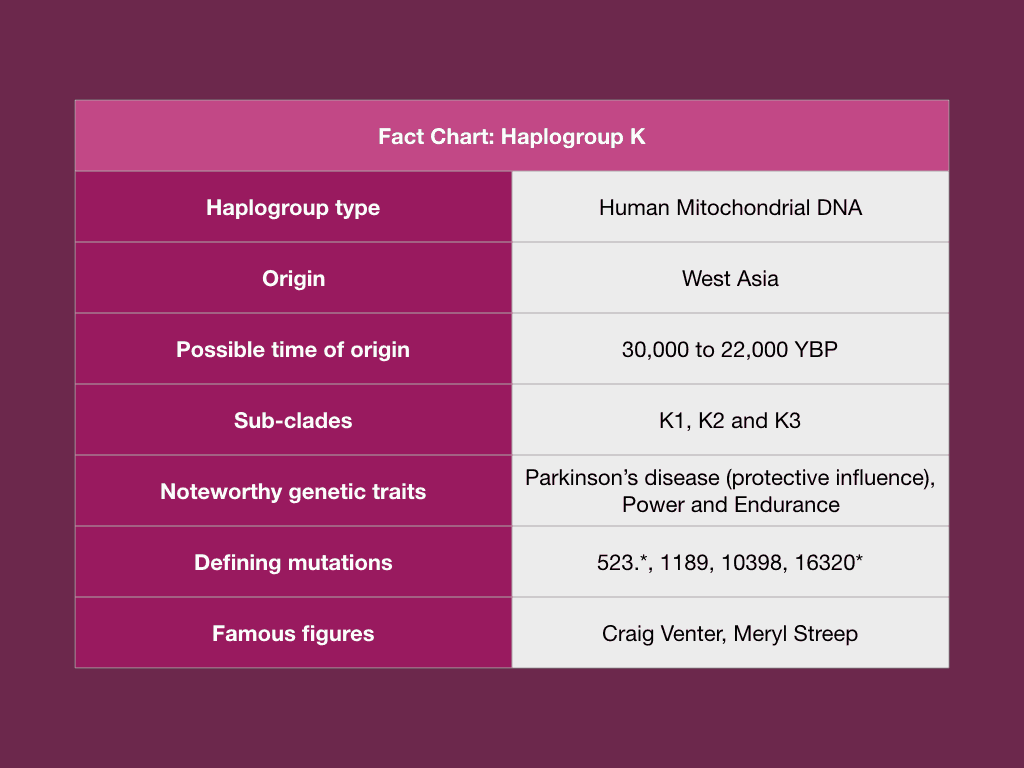 Analyze DNA raw data for Haplogroup K