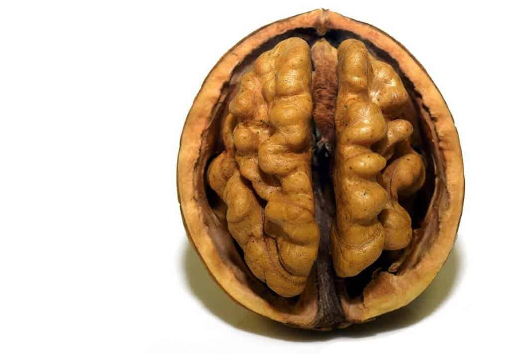 Analyze your genes for Schizophrenia